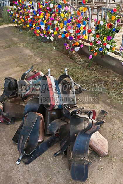 Europe/France/Midi-Pyrénées/12/Aveyron/Aubrac/Saint-Chély-d'Aubrac: Lors de la Fête de la transhumance en Aubrac chez Mr Niel éleveur à Aulos:  Les éleveurs apportent les décorations: fleurs, drapeaux, clarines qui seront posées sur les bêtes