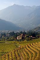 Italien, Suedtirol, Meran: Weingut oberhalb Merans   Italy, South Tyrol, Alto Adige, Merano: Wine-Growing Estate above Merano