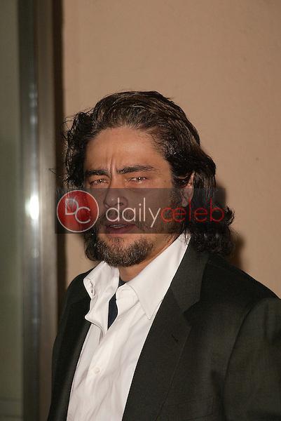 Benecio Del Toro