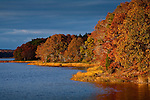 Fall colors the Oaks on the Westport River, Westport, MA, USA