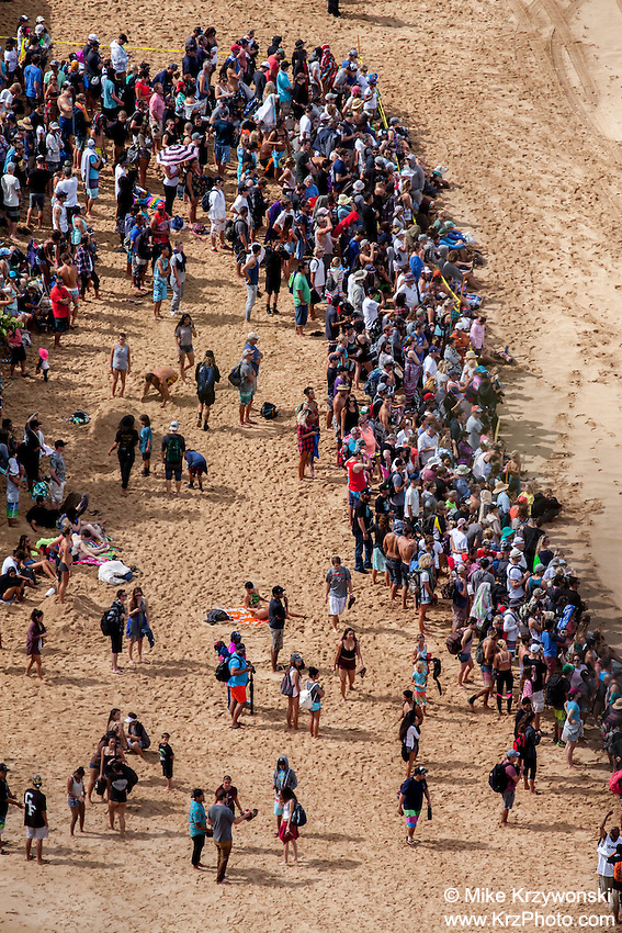 Crowd of spectators on the beach watching  the 2016 Big Wave Eddie Aikau Contest, Waimea Bay, North Shore, Oahu