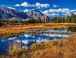 Grand Teton National Park, WY:  Beaver pond and cloud reflections on the Snake River with Mount Moran in the distance at Schwabacher's Landing in late fall