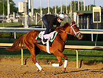April 27, 2019 : Out for a Spin works out at Churchill Downs, Louisville, Kentucky, preparing for a start in the Kentucky Oaks. Owner Commonwealth Stable, trainer Dallas Stewart. By Hard Spun x My Mammy (Came Home) Mary M. Meek/ESW/CSM