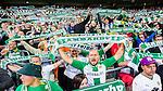 ***BETALBILD***  <br /> Stockholm 2015-07-13 Fotboll Allsvenskan Hammarby IF - Falkenbergs FF :  <br /> Hammarbys supportrar med halsdukar sunger under matchen mellan Hammarby IF och Falkenbergs FF  <br /> (Foto: Kenta J&ouml;nsson) Nyckelord:  Fotboll Allsvenskan Tele2 Arena Hammarby HIF Bajen Falkenberg FFF supporter fans publik supporters glad gl&auml;dje lycka leende ler le
