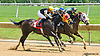Table Games winning at Delaware Park on 6/9/15