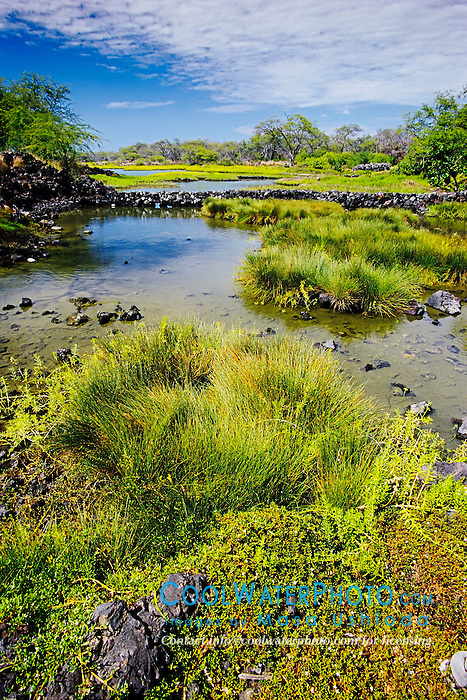 Kaloko Fish Pond (ancient Hawaiian freshwater fish pond), Kaloko-Honokohau National Historical Park, Kona Coast, Big Island, Hawaii