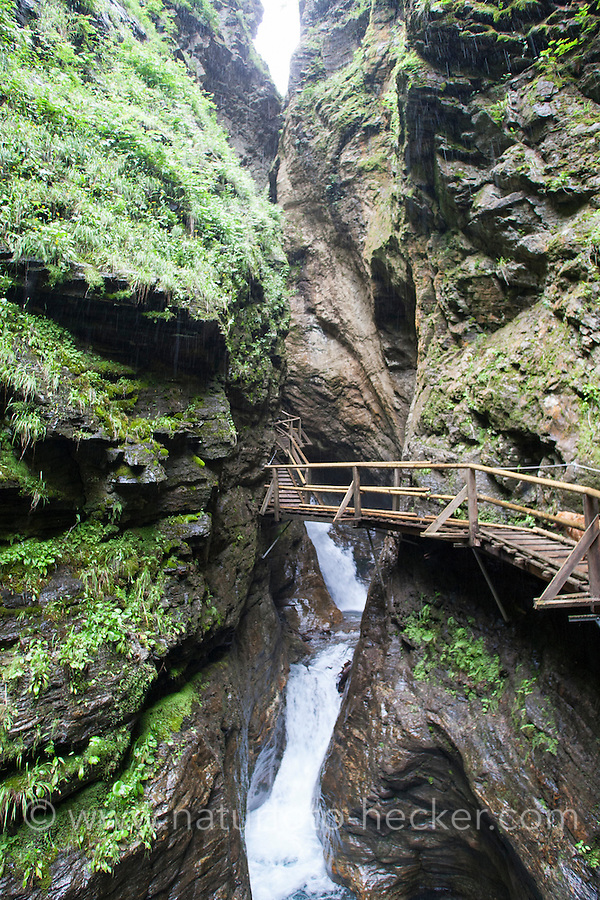 Ragga-Schlucht, Raggaschlucht, Gebirgsschlucht, Schlucht, Klamm, Bach, Gebirgsbach, Alpen, Österreich, Kärnten, Nationalpark Hohe Tauern. Canyon, gorge, Stream, rivulet in the mountains, alps, Austria, Carinthia