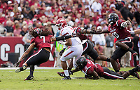 Hawgs Illustrated/BEN GOFF <br /> Chase Hayden (2), Arkansas running back, tries to evade a host of South Carolina defenders in the second quarter Saturday, Oct. 7, 2017, at Williams-Brice Stadium in Columbia, S.C.