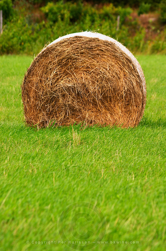 Cut field with hay bale. Smaland region. Sweden, Europe.