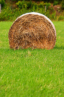Cut field with hay bale. Smaland region. Sweden, Europe.