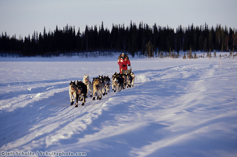Susan Butcher Near Finger Lake Checkpoint Iditarod