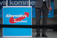 2014/05/23 Berlin | EU-Wahlkampf AfD