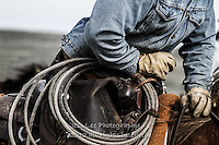 Forward Cowboys working and playing. Cowboy Cowboy Photo Cowboy, Cowboy and Cowgirl photographs of western ranches working with horses and cattle by western cowboy photographer Jess Lee. Photographing ranches big and small in Wyoming,Montana,Idaho,Oregon,Colorado,Nevada,Arizona,Utah,New Mexico.