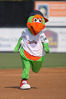 Blooper, the mascot of the Danville Braves, runs the bases at Dan Daniels Park in Danville, VA, Sunday July 27, 2008.