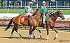 Vakeesh at Delaware Park on 7/11/15