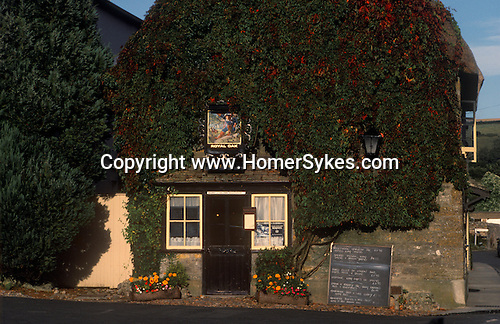 The Village Pub. Royal Oak, Cerne Abbas, Dorset. England