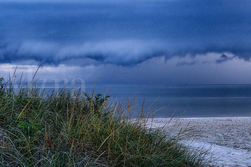 Pending coastal storm.