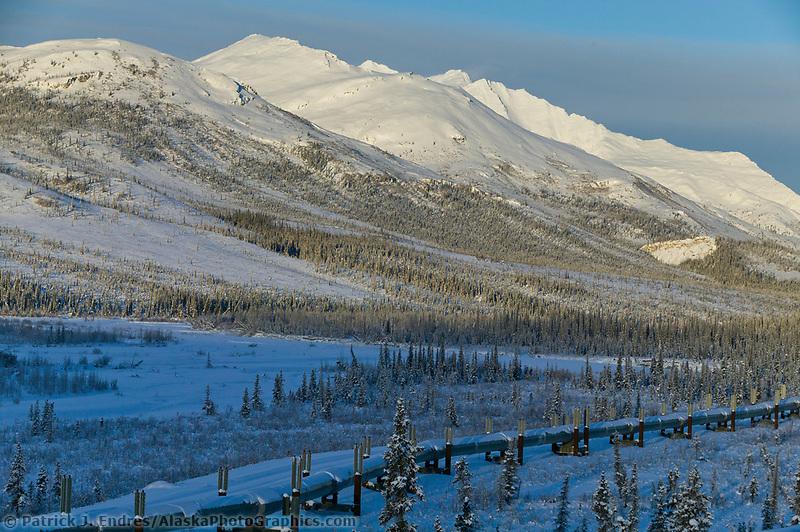 Trans Alaska oil pipeline crosses the taiga of the south side of the Brooks range mountains, Arctic, Alaska