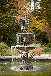 Roney Fountain in the Sarah P Duke Gardens<br /> <br /> fall scenes