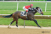 Lay It On winning at Delaware Park on 5/30/15