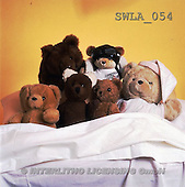 Carl, CUTE ANIMALS, teddies, photos(SWLA054,#AC#)