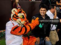 Blacksburg, VA - SEPT 30, 2017: Clemson Tigers mascot nabs a photographers camera during game between Clemson and Virginia Tech at Lane Stadium/Worsham Field Blacksburg, VA. (Photo by Phil Peters/Media Images International)
