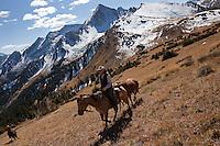 Cold Mountain Ranch