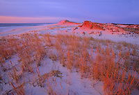 Sand Dunes, New Jersey