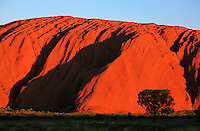 The sun sets on Ayers Rock, or Uluru, Northern Territory, Australia, on January 1, 2009. Photo by Lucas Schifres/Pictobank