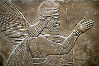 Assyrian relief sculpture panel of a protective spirit from Nimrud, Iraq.  865-860 B.C North West Palace, Room Z.  ref: British Museum Assyrian  Archaeological exhibit WA 118874