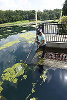 NWA Democrat-Gazette/FLIP PUTTHOFF <br /> WATER WORK<br /> Kimberly Main, property manager at the Illinois River Watershed Partnership, clears lalgae away from a drain on the lake at the partnership's property in downtown Cave Springs. Algae grows on the lake during warm weather, she said.