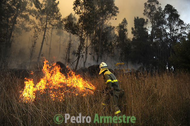 A member of the Galician fire brigade works around the fire area in Porqueira, on August 14, 2010, near Ourense. Pedro ARMESTRE