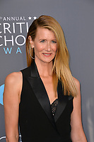 Laura Dern at the 23rd Annual Critics' Choice Awards at Barker Hangar, Santa Monica, USA 11 Jan. 2018<br /> Picture: Paul Smith/Featureflash/SilverHub 0208 004 5359 sales@silverhubmedia.com