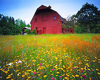 Old Barn and Meadow, Mount Desert Island, Maine