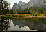 Autumn Foliage and Cathedral Rocks Reflected on the Merced River, Yosemite National Park
