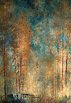 Impressionist view of tall, bare golden trees against a blue sky.