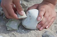 Naturkunst am Strand, Mädchen, Kind legt aus Steinen Mosaik, ein Stein wird an einem anderen Stein etwas abgeschliffen, damit er besser ins Mosaik passt, Steinmosaik, Strandmosaik, Strandkunst, Strandgut, Strand, Meer, Küste