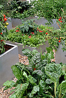 Vegetables, herbs, flowers, tomatoes, chard, salad greens, in galvanized metal steel raised beds or containers