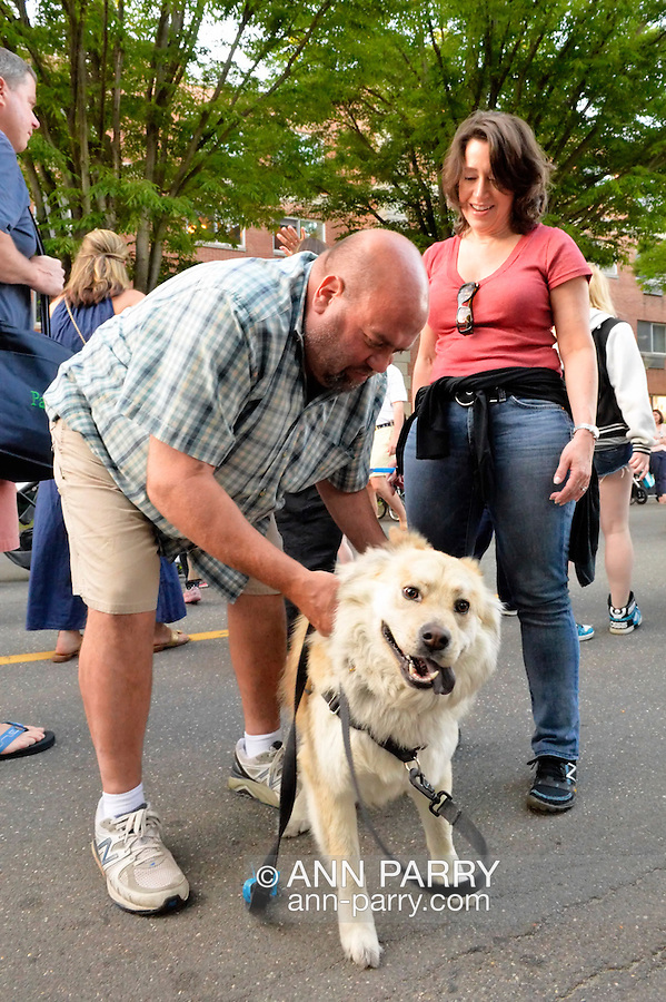 Garden City, New York, U.S. - June 6, 2014 - Husband CHRIS BUNGARZ, wife CHRIS BUNGARZ, and AMBER their Chow Chow Mix, of Garden City, are visiting the 17th Annual Garden City Belmont Stakes Festival, celebrating the 146th running of Belmont Stakes at nearby Elmont the next day. There was street festival family fun with live bands, food, pony rides and more, and a main sponsor of this Long Island night event was The New York Racing Association Inc.