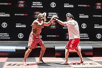 SAO PAULO, SP, 18.12.2014 - UFC FIGHT NIGHT BARUERI / TREINO ABERTO. O lutador de MMA, Renan Barão,  durante treino aberto no estádio Allianz Parque, na tarde desta quinta-feira (18). Os treinos abertos antecedem a luta que acontece em Barueri no próximo sábado e fecha o calendário de lutas do UFC em 2014. (Foto:  Adriana Spaca / Brazil Photo Press)