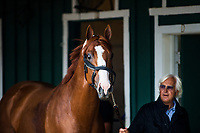 BALTIMORE, MD - MAY 16:  Justify with trainer Bob Baffert at Pimlico Racecourse on May 16, 2018 in Baltimore, Maryland. (Photo by Alex Evers/Eclipse Sportswire/Getty Images)