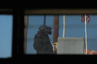 05-31-08: Pacific Beach, San Diego, CA.  SWAT members surround a house in Pacific Beach where suspect WalterCordell (52) is hiding.  Cordell beat his girlfriend Marlene Pernicano severly with a hammer the day before.