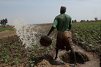 Traditional watering with calabash