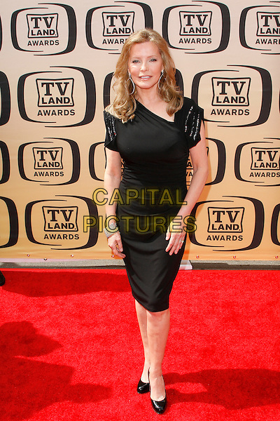 Cheryl Ladd.The 8th Annual TV Land Awards held at  Sony Studios in Culver City, California, Culver City, USA..April 17, 2010   .full length black dress shoes.CAP/ROT/BAR.©Barraza/Lee Roth/Capital Pictures