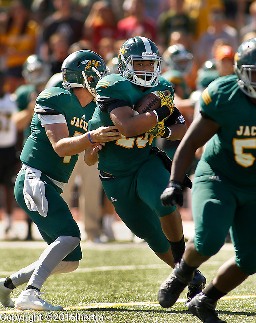 SPEARFISH, SD - SEPTEMBER 17: Jamil Bond #23 of Black Hills State takes a handoff from quarterback Ryan Hommell during their college football game against Dixie State Saturday September 17, 2016 at Lyle Hare Stadium in Spearfish, S.D.   (Photo by Dick Carlson/Inertia)