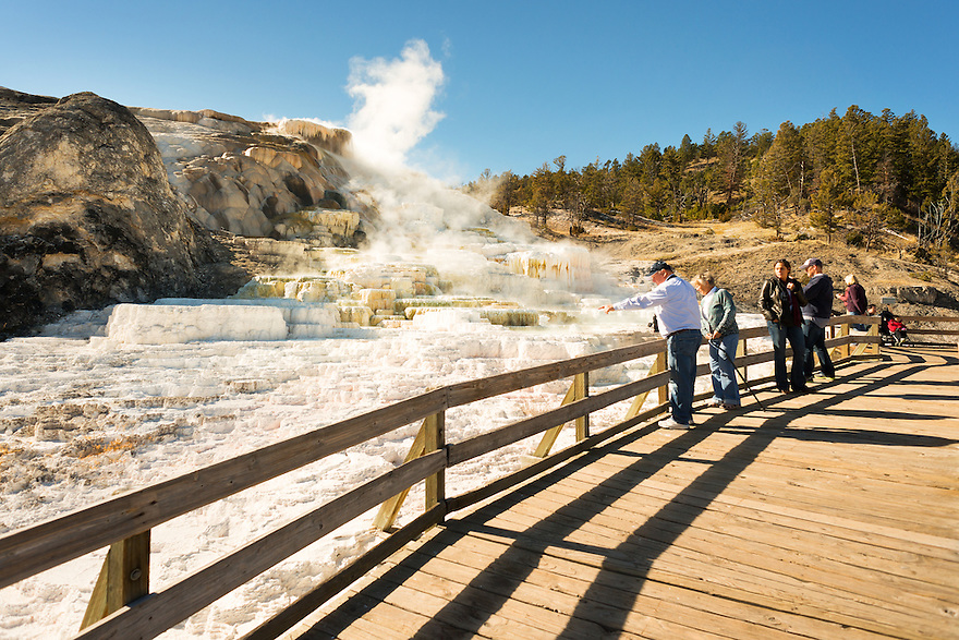 Visitors explore the travertine terraces of Mammoth Hot Springs in Yellowstone National Park.