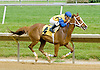 MD Sugar and Spice winning at Delaware Park on 5/30/12