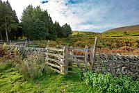 Kissing gate at Greet Bridge, Slaidburn, Lancashire.