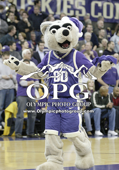 20 December 2005: The Washington Huskies mascot tossed t-shirts into the crowd during a  LSU Tigers timeout at Bank of America Arena in Seattle, WA. The Washington Huskies defeated the LSU tigers 88-72.
