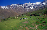 Trekking group stop for picnic lunch surrounded by mountain peaks, Atlas Mountains, Morocco
